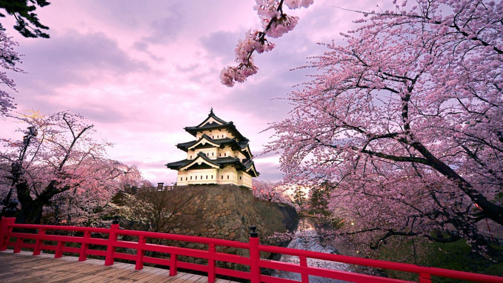 Kyoto Japan cherry blossoms spring