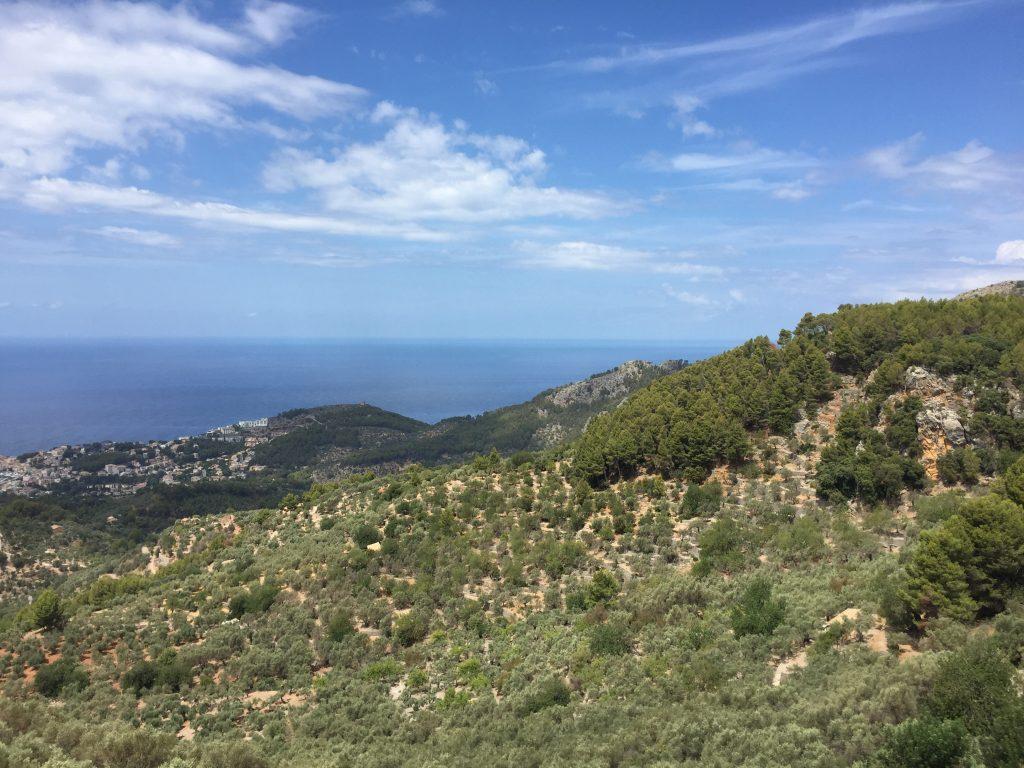 Island Guide Mallorca view