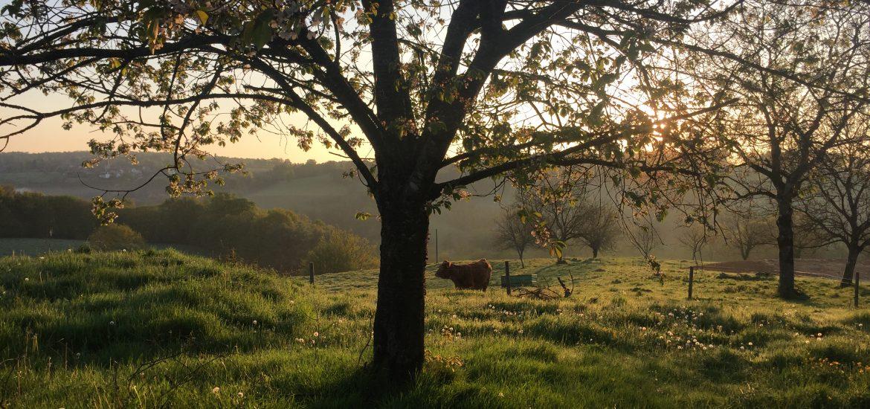 French Dordogne sunrise view